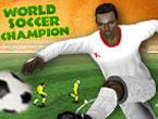 Dünya Futbol Şampiyonası Oyunu